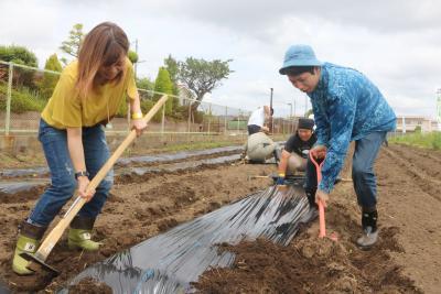 ハタケフェス初開催 美術家の増田さん 土で育む野菜とやりがい 若者に農業体験呼び掛け